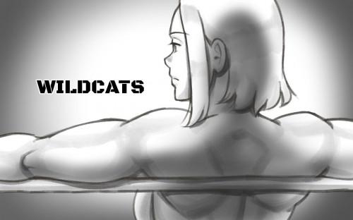 Hentai  Wildcats