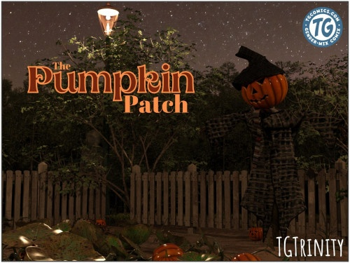 3D  TGTrinity - The Pumpkin Patch